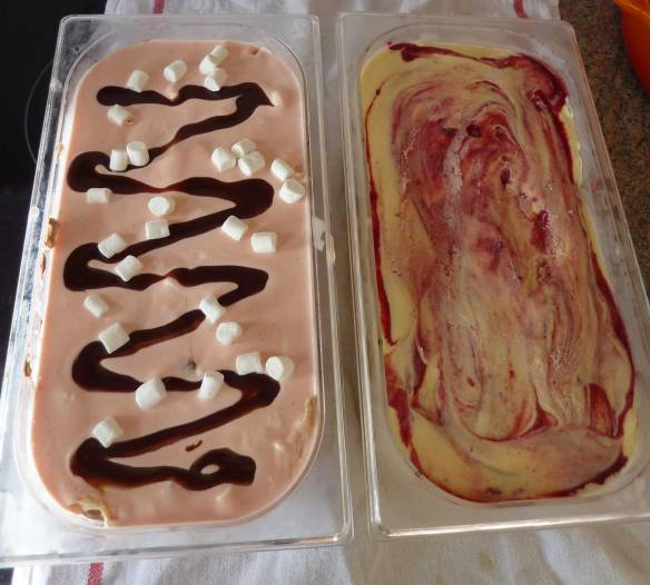 Our two special home made ice creams.